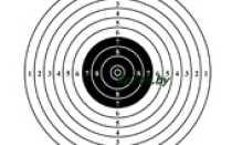 Мишень для стрельбы (файл для печати)